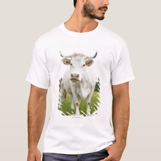 Cow standing in grassy field T-Shirt