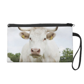 Cow standing in grassy field wristlet