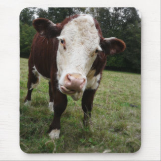 Cow Sticking Out Tongue Mouse Pad