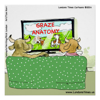 Cow TV Funny Cartoon Poster