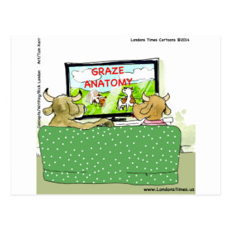 Cow TV Shows Funny Cartoon Post Cards