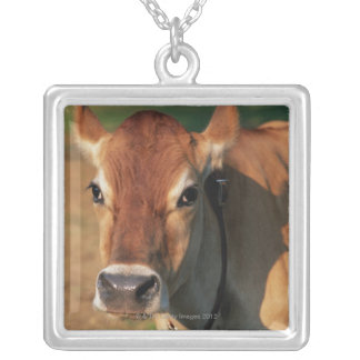 Cow Wearing a Cowbell Silver Plated Necklace