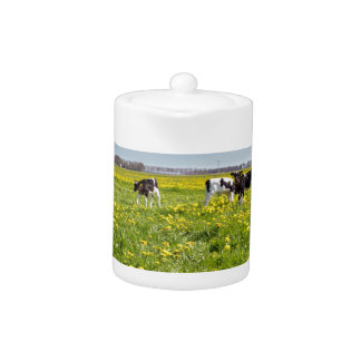 Cow with newborn calves in meadow with dandelions teapot