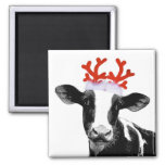 Cow with Reindeer Antlers 2 Inch Square Magnet