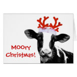 Cow with Reindeer Antlers Card