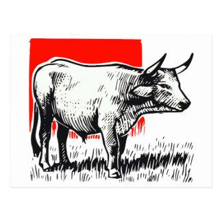 Cow Woodcut Postcard