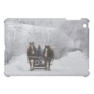Cowansville, Quebec, Canada iPad Mini Cases