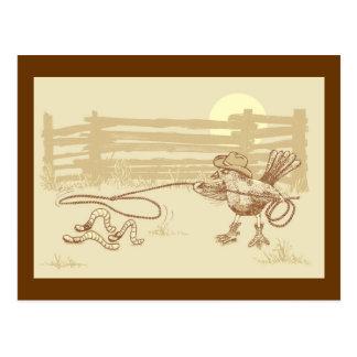 Cowbird Postcard