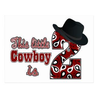 Cowboy 2nd Birthday Post Card