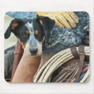 Cowboy and dog on horse mouse pad