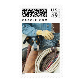 Cowboy and dog on horse stamp