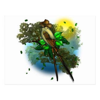 Cowboy Bird Postcard