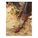 Cowboy boots 2 post cards