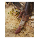 Cowboy boots 2 posters