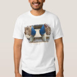 Cowboy boots on fence tee shirts