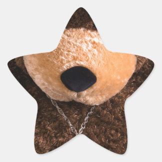 Cowboy Cowgirl Teddy Bear Western Turquoise Hat Star Sticker