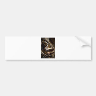 Cowboy Essentials - Boots and Ropes Bumper Sticker