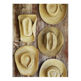Cowboy Hats Postcard