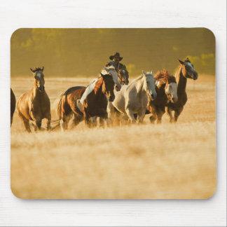 Cowboy herding horses 2 mouse pad