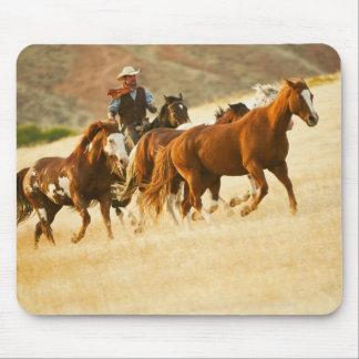 Cowboy herding horses 3 mousepads