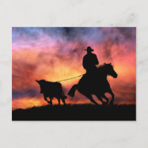 Cowboy Horse and Steer Roping in Sunset Postcard