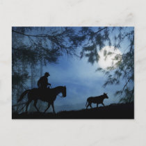 Cowboy Horse and Steer with Full Moon Winter Postcard