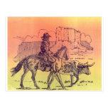 Cowboy Horse Steer Cattle Cow Western Sunset Art Post Card