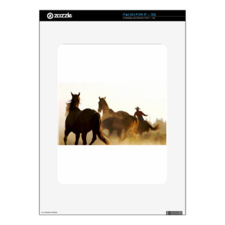 cowboy lasso horse decal for the iPad