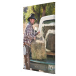 Cowboy lifting bales of hay canvas print