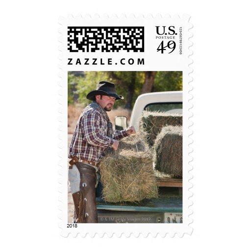 Cowboy lifting bales of hay stamps