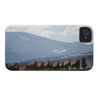 Cowboy moving herd of horses iPhone 4 Case-Mate case