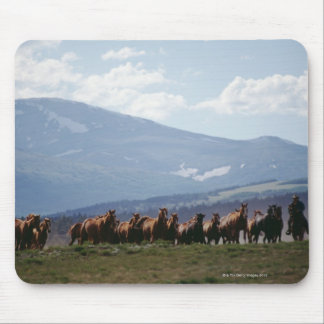 Cowboy moving herd of horses mouse pad