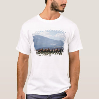 Cowboy moving herd of horses T-Shirt