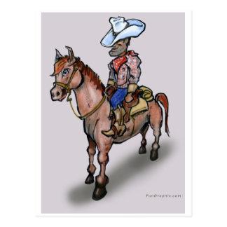 Cowboy n Horse Postcard