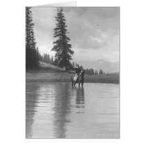 Cowboy on a horse standing in a pond drinking from cards