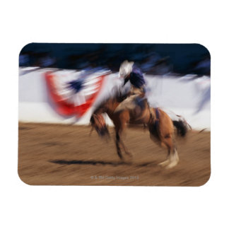 Cowboy on bucking bronco magnet