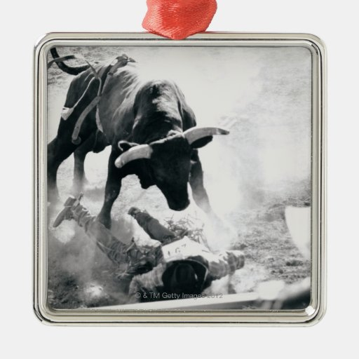 Cowboy on ground after falling off bull christmas ornament