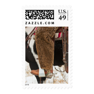Cowboy on horse stamps