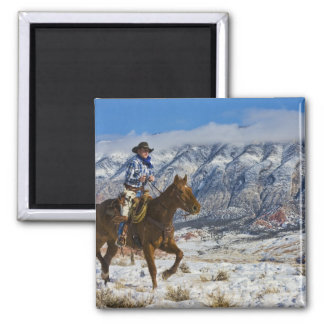 Cowboy on Horse wearing Leather Chaps 2 Refrigerator Magnet
