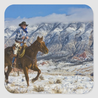 Cowboy on Horse wearing Leather Chaps 2 Sticker