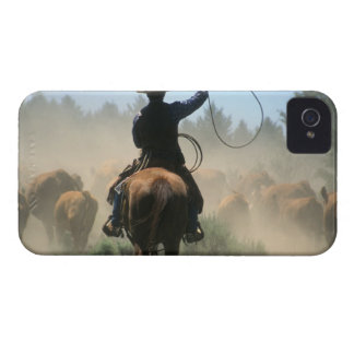 Cowboy on horse with lasso driving cattle blackberry bold case
