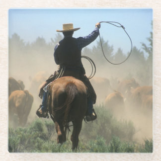 Cowboy on horse with lasso driving cattle glass coaster