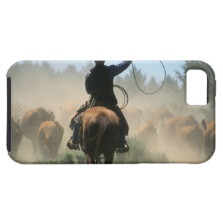Cowboy on horse with lasso driving cattle iPhone SE/5/5s case
