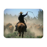 Cowboy on horse with lasso driving cattle magnet