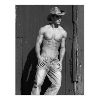 Cowboy Postcard #2