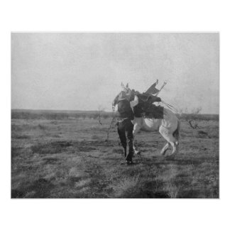 """Cowboy """"Red Saunders"""" Saddles a Bronco Poster"""