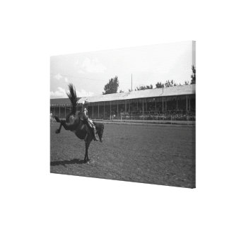 Cowboy riding horse in rodeo, (B&W) Canvas Print