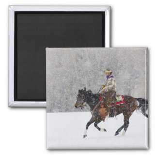 Cowboy riding in snowfall magnets