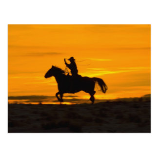Cowboy riding in the Sunset with lariat Rope 2 Postcard