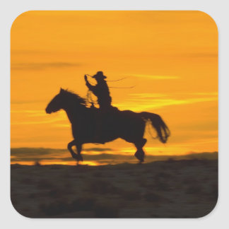 Cowboy riding in the Sunset with lariat Rope 2 Sticker